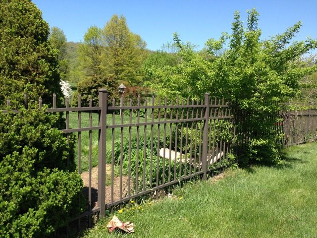 How to Create a Soothing Atmosphere Within the Fences | Fairfax, VA