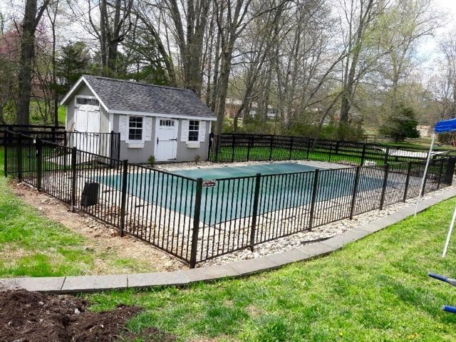 8 Reasons You Need a Pool Fence
